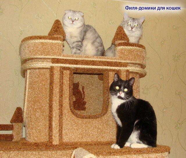 Домик для своей кошки можно купить а