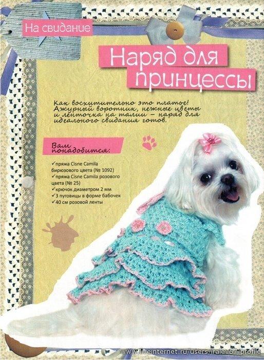 Вязаное платье для собаки по