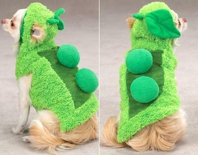 Выкройки костюмов для собак