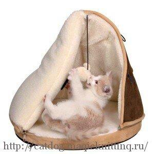 домик для котенка своими руками