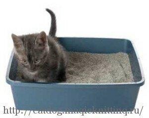 Как избавиться от кошачего запаха