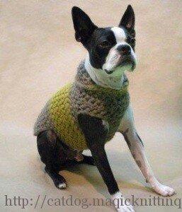 одежда для собак крючком. Схемы