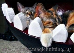 Домик для кота своими руками фото