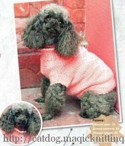 схемы вязаной одежды для собак своими руками